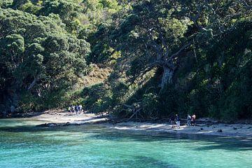 Nieuw Zeeland - Strand van Maurice Weststrate