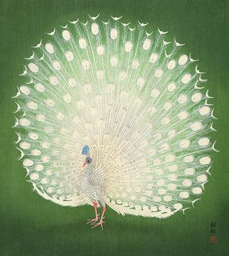Peacock, Ohara Koson