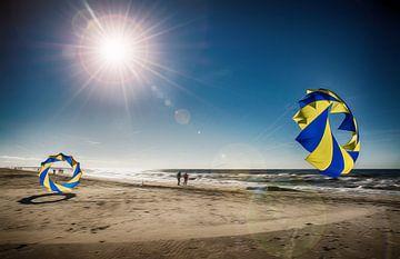 Dänemark Strand mit Bol van