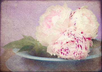 vintage pink roses sur Marga Goudsbloem