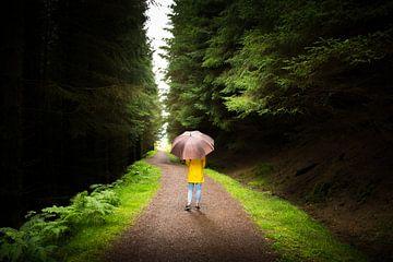 Dwalen door de bossen in Schotland van Reis Genie