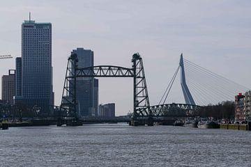 Die Hef- und Erasmusbrücke von Inge van der Stoep