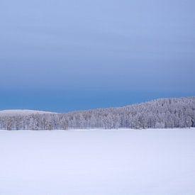 Finland van David Lawalata