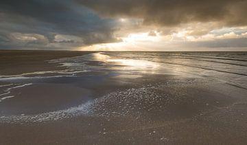 Maasvlakte 10 van Deshamer