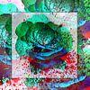 In den Farbtopf gefallen van Gertrud Scheffler thumbnail