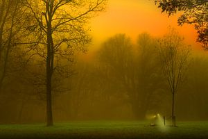 Mysteriöser Nebel