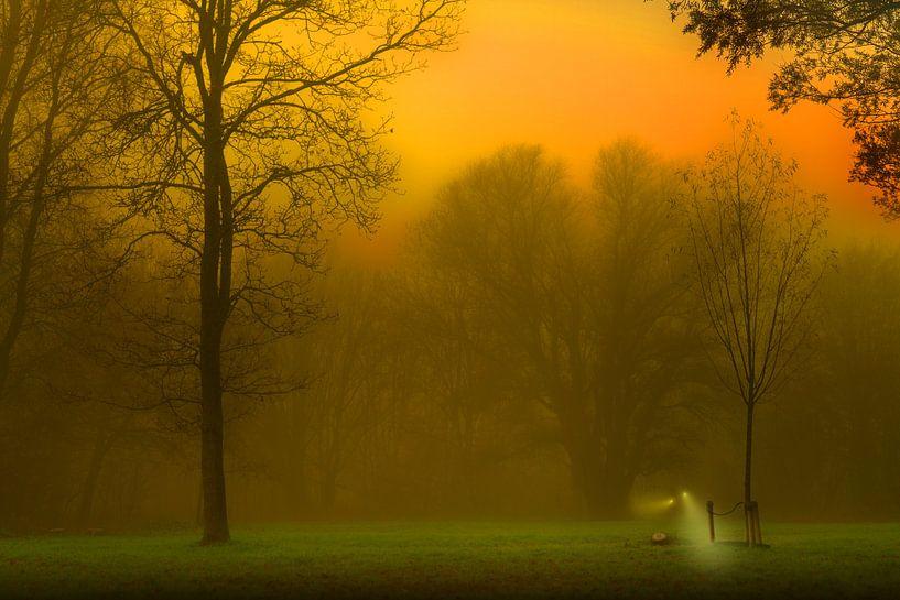Mysteriöser Nebel von Marcel Kieffer