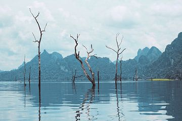Nationaal park Khao Sok van