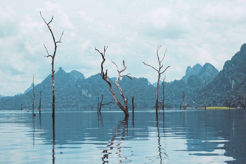 Nationaal park Khao Sok van Lisette van Oosterhout