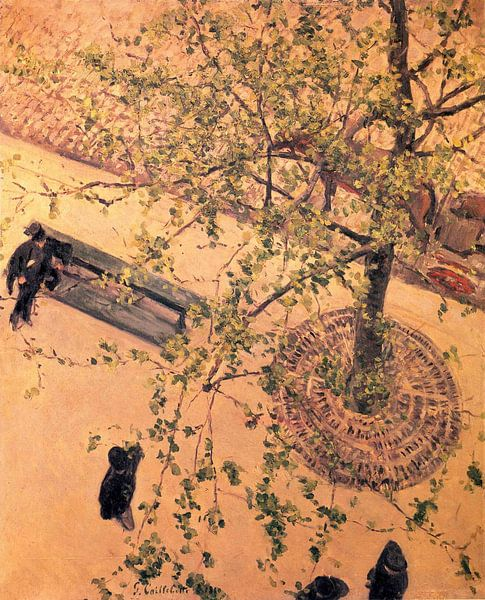 Gustave Caillebotte - De Boulevard van bovenaf gezien 1880 van Marieke de Koning