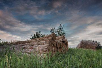 Rietschoven in Hollands landschap van Jos Reimering