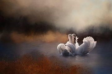 Schwäne im Wasser in der Herbstlandschaft von Diana van Tankeren