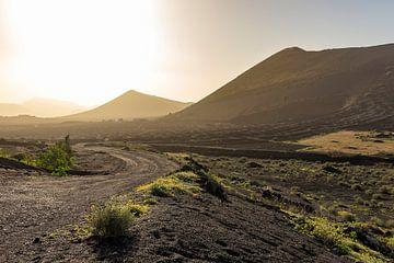Vulkanische bergen in Lanzarote