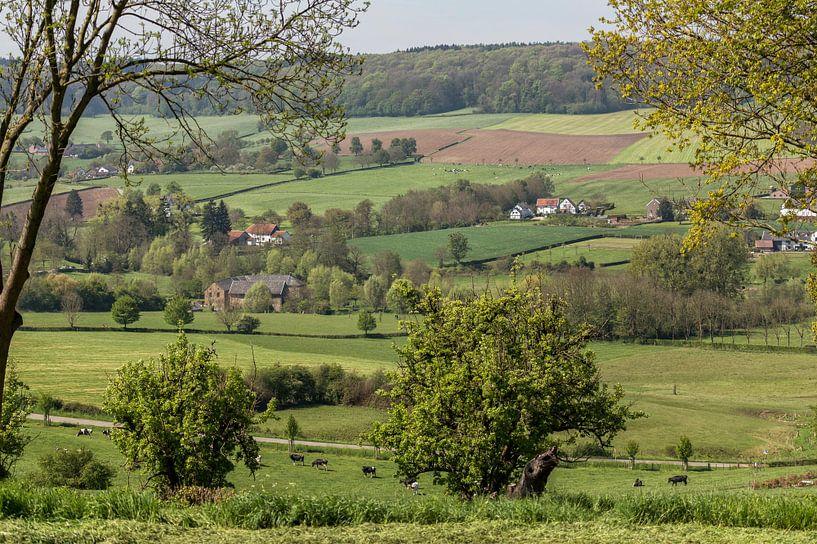 Voorjaar in Zuid-Limburg van John Kreukniet
