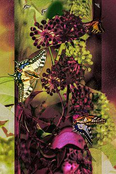 Collage - Vlinders op klimop van Christine Nöhmeier