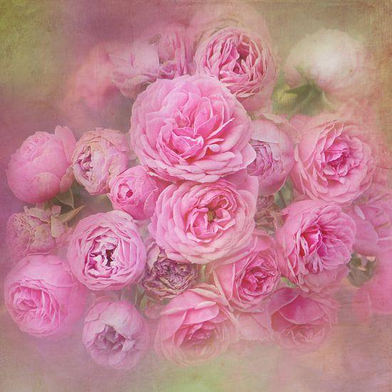 Romantische Rosen van Heike Hultsch
