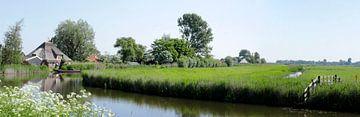 Panorama van een Nederlands landschap in de lente van Cora Unk