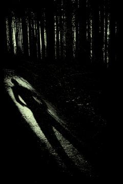 The shadow/ schaduw von Corinne Cornelissen-Megens