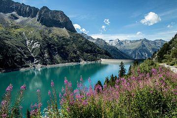 Bergsee und Blumen von Martin Smit
