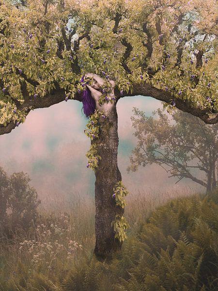 Pruimenboom van Babette van den Berg