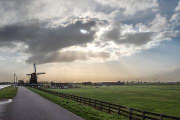 Zonnestralen beschijnen een polderlandschap met molen