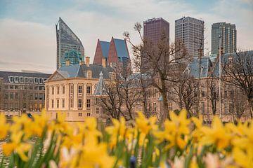 Mauritshuis Den haag bij schemering met skyline von Erik van 't Hof