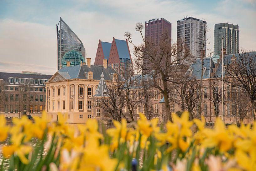 Mauritshuis skyline Den haag bij schemering met skyline van Erik van 't Hof