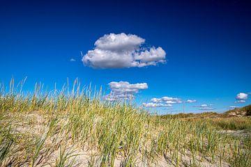 Wolken über Dünengras von Alexander Wolff