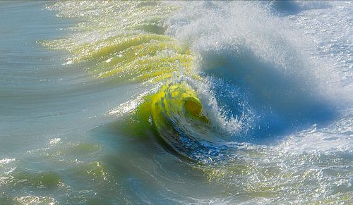 1139 Das Auge der Welle