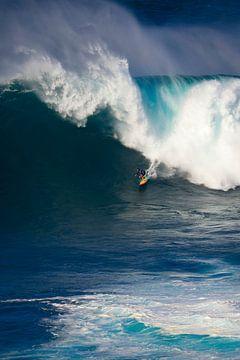Surfing! van rik janse
