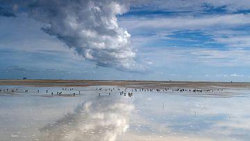 Wattenmeer von Rinke van Brenkelen