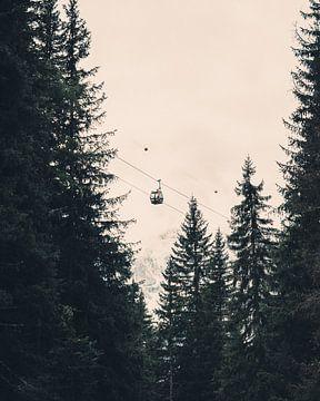 Seilbahn zwischen den Bäumen von Steffen Peters