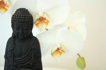 Witte Meditatie van Anneke Verweij