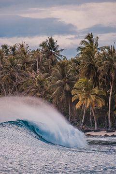 Mentawai golven