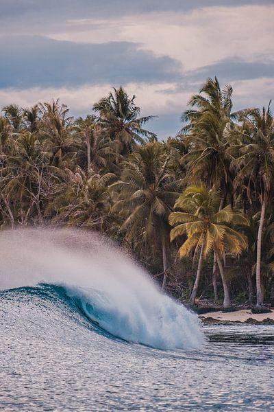 Vagues Mentawai sur Andy Troy