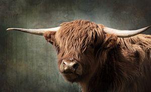 Portret van Schotse Hooglander met vintage bewerking van KB Design & Photography (Karen Brouwer)