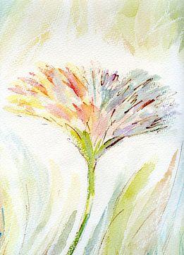 Blüte Zart von Claudia Gründler