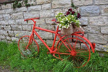 Rotes Fahrrad von My Footprints