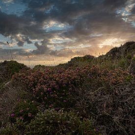 Un magnifique coucher de soleil sur la côte écossaise sur Mart Houtman