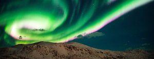 Aurora panorama sur
