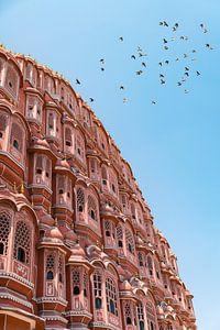 Overvliegende duiven bij de Hawa Mahal in Jaipur India. van Niels Rurenga