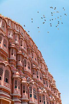 Überfliegende Tauben am Hawa Mahal in Jaipur Indien. von Niels Rurenga