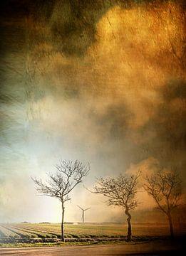 Bäume am Tulpenfeld van Vera Kämpfe