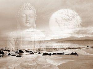 Frieden Buddha Lanzarote Strand von Renate Knapp