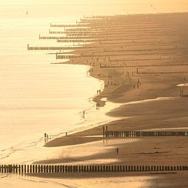 La côte de Zoutelande dans la lumière d'été sur Thom Brouwer