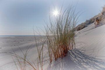 Am Strand in Ameland von Uwe Merkel