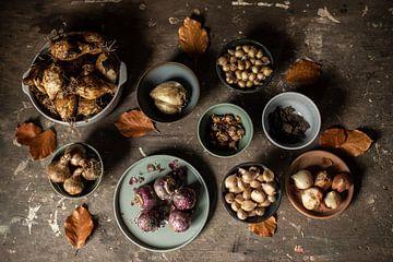 Warten | ein Tisch voller Frühlingsblumenzwiebeln bildende Kunst Stillleben Farbfotografie | Wandkun von Nicole Colijn