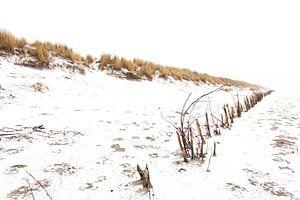 Ameland duinen in de sneeuw 02