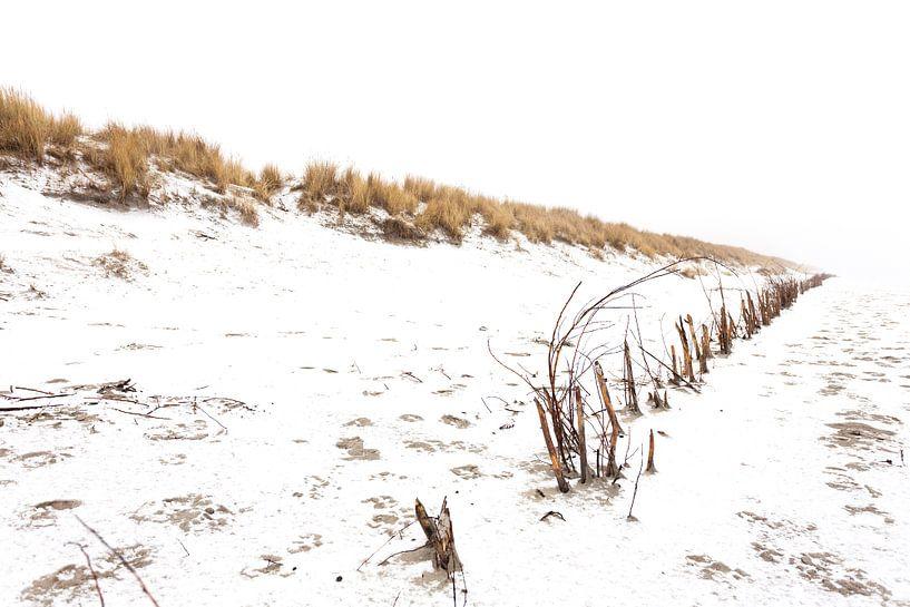 Ameland duinen in de sneeuw 02 van Everards Photography