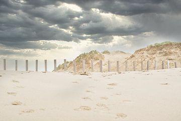 Duinen en  strand, Zandvoort van Wendy Tellier - Vastenhouw